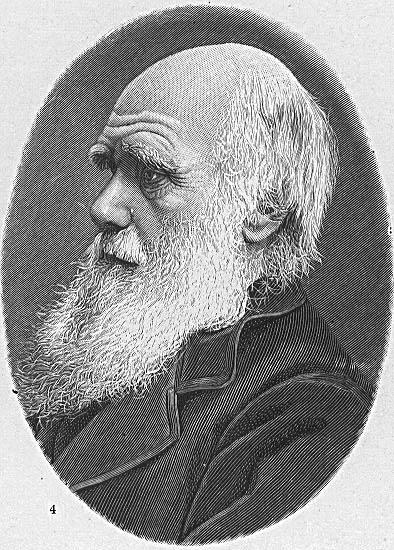 2月12日 ダーウィンの日