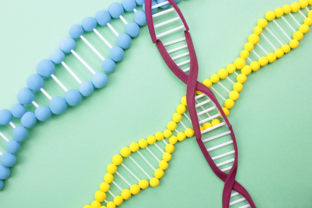4月25日 DNAの日:ポルトガル